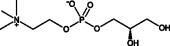 <em>sn</em>-glycero-3-Phosphocholine