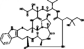Phallacidin