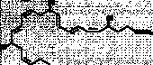 Resolvin D3 methyl ester