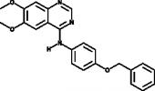 EGFR/ErbB2 Inhibitor