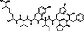 Angiotensin III (human, mouse)