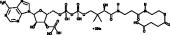 Succinyl-<wbr/>Coenzyme A (sodium salt)