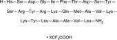 PACAP (1-27) (human, mouse, ovine, porcine, rat) (trifluoroacetate salt)