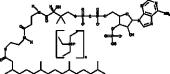 phytanoyl-<wbr/>Coenzyme A (triethyl<wbr/>ammonium salt)