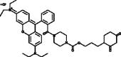 DCP-Rho1
