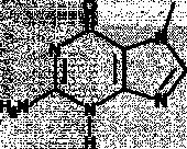 7-Methylguanine