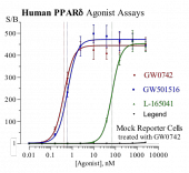 Human PPARδ Reporter Assay System, 3 x 32 assays in 96-well format