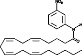 Arachidonoyl <em>m</em>-<wbr/>Nitroaniline