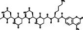 Enteropeptidase Fluorogenic Substrate