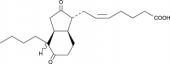 Bicyclo Prostaglandin E<sub>2</sub>