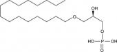 1-<wbr/>Hexadecyl Lyso<wbr/>phosphatidic Acid