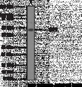 TRF2 Monoclonal Antibody (Clone 4A794.15)