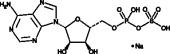 Adenosine 5'-phospho<wbr/>sulfate (sodium salt)