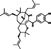 Isogarcinol
