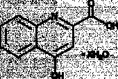 Kynurenic Acid (hydrate)