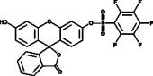 Pentafluoro<wbr/>benzene<wbr/>sulfonyl fluorescein