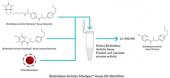 Biotinidase Activity MaxSpec<sup>®</sup> Assay Kit