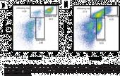 Macrophage (mouse) Elicitation Kit