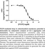 JC-1 Mitochondrial Membrane Potential Flow Cytometry Assay Kit
