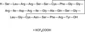 Atrial Natriuretic Peptide (1-28) (rat) (trifluoro<wbr/>acetate salt)