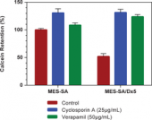 Multidrug Resistance Assay Kit (Calcein AM)