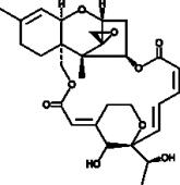 Satratoxin H