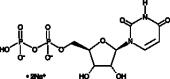 UDP (sodium salt)