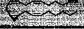 (±)11(12)-<wbr/>EET MaxSpec<sup>®</sup> Standard