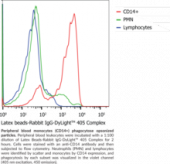 Phagocytosis Assay Kit (IgG-DyLight™ 405)