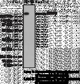 ARAP2 Polyclonal Antibody