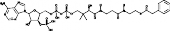 Phenylacetyl Coenzyme A
