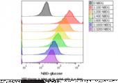 Glucose Uptake Cell-<wbr/>Based Assay Kit