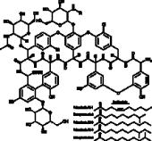 Teicoplanin Complex