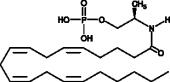R-<wbr/>1 Methan<wbr/>andamide Phosphate