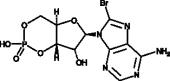 8-bromo-Cyclic AMP