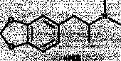 MDDMA (hydro<wbr>chloride)