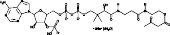 Acetoacetyl Coenzyme A (sodium salt hydrate)