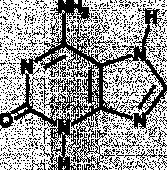 Isoguanine
