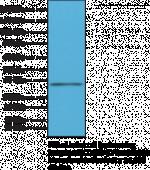 Integrin α4/CD49D (C-Term) Rabbit Monoclonal Antibody