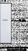 BLT<sub>2</sub> Receptor Polyclonal Antibody