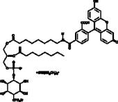 PtdIns (4)-<wbr/>P<sub>1</sub>-<wbr/>fluorescein (ammonium salt)