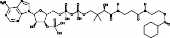 Cyclohexanoyl-Coenzyme A