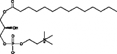 1-Myristoyl-<wbr/>2-hydroxy-<em>sn</em>-<wbr/>glycero-3-PC