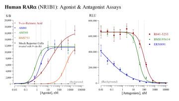 Human RAR Reporter Assays PANEL, 3 x 32 assays in 96-well format