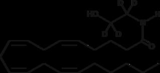 Arachidonoyl Ethanolamide-<wbr/>d<sub>4</sub>