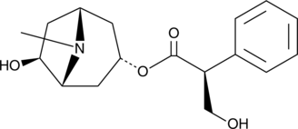 Anisodamine