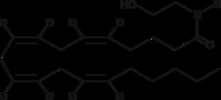 Arachidonoyl Ethanolamide-<wbr/>d<sub>8</sub>