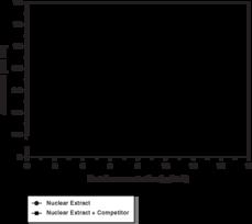 Nrf2 Transcription Factor Assay Kit