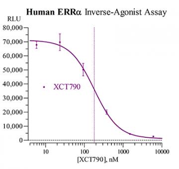 Human ERRα Reporter Assay System, 1 x 96-well format assay