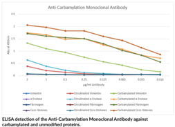 Anti-<wbr/>Carbamylation (Homo<wbr/>citrulline) Monoclonal Antibody